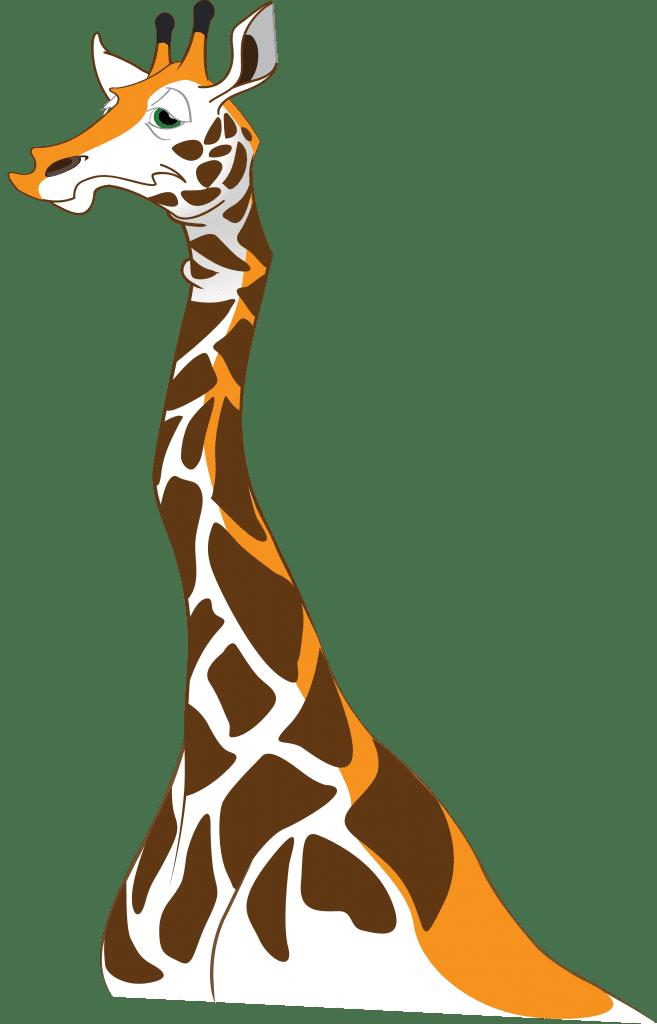 ZooWhiz Giraffe